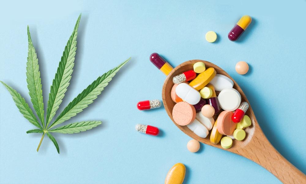 CBD et interactions avec les médicaments