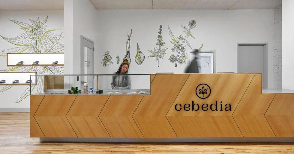 Nouveautés Cebedia